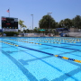 Swimspire Triathlete and Adult Freestyle Stroke Clinic in Coral Springs